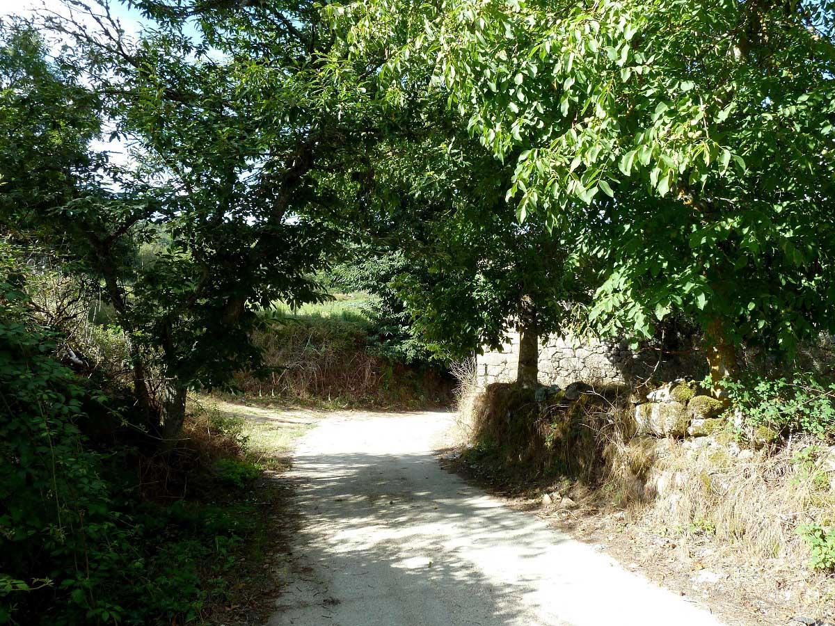 Casa-rural-Celeirós-Paseo