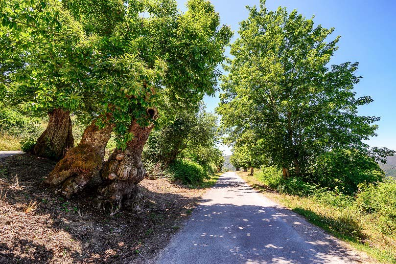 Casa-rural-Comarca-Valdeorras-Souto